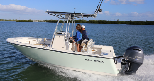 21 Foot Center Console - Sea Born LX21